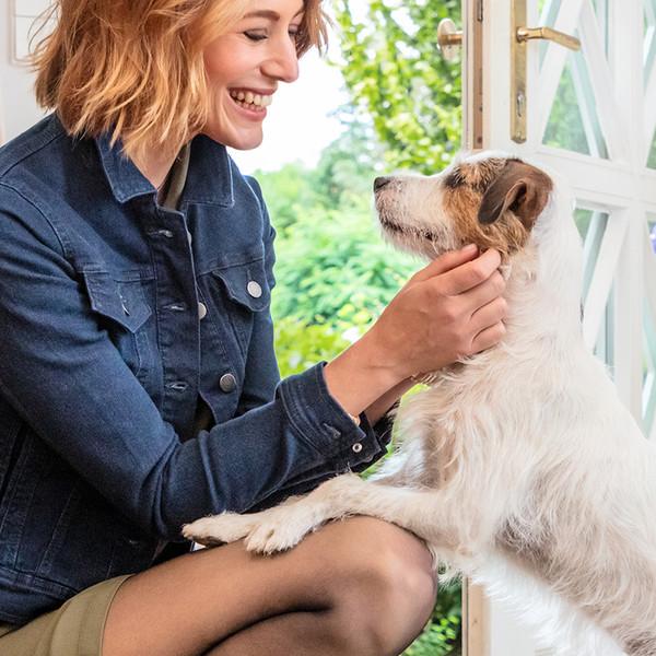 nur die Keyvisual Frau im Strumpfhose kniet um ihren Hund zu begrueßen